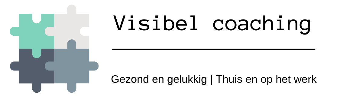 Logo Visibel puzzel-01